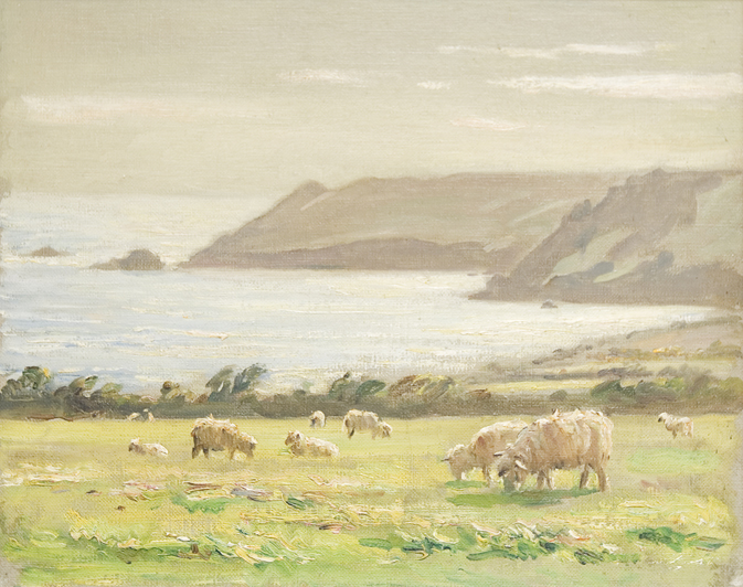 EH_Rigg_sheep_above_bolt_head_salcombe
